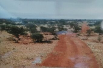 Lonely Bush Track in Outback WA
